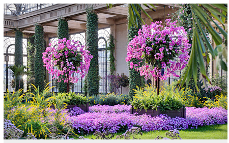 Longwood Gardens Admission Only 9